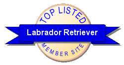 Labrador Retreiver Members